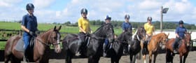 BHS / NVQ Training